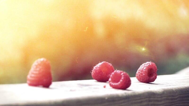 Meer Energie Met Voeding 4 Effectieve Manieren Eigenweg Coaching