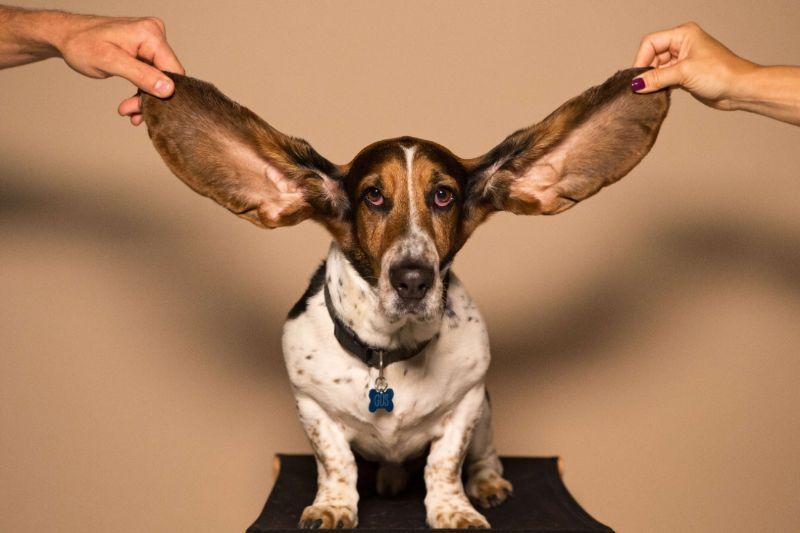 beter-leren-luisteren
