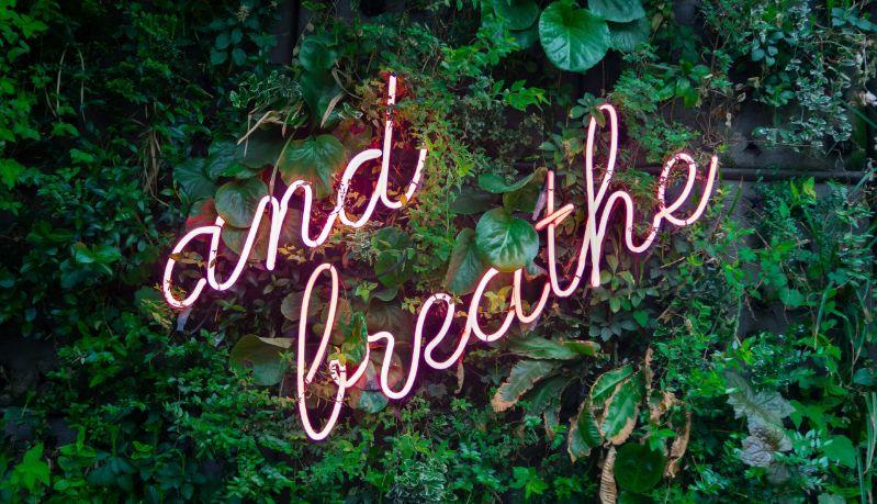 gezonde ademhaling